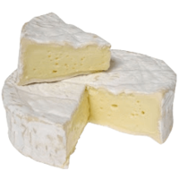 Плесень для сыра